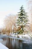 Scena della neve del canale di inverno Fotografia Stock Libera da Diritti