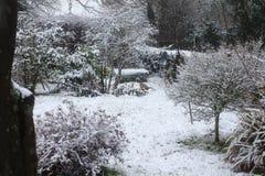 Scena della neve della Suffolk immagini stock