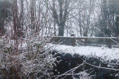 Scena della neve della Suffolk immagini stock libere da diritti