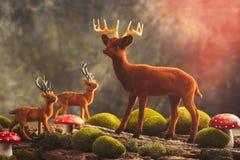 Scena della renna Fotografia Stock Libera da Diritti