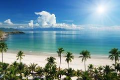 Scena della spiaggia Immagini Stock