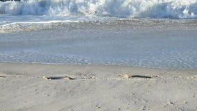 Scena della spiaggia con le onde e le stampe del piede video d archivio