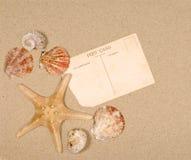 Scena della spiaggia con le stelle marine e la cartolina Immagine Stock