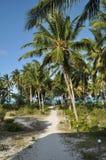 Scena della spiaggia a Zanzibar Fotografia Stock