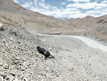 Scena della strada principale diLeh-Ladakh-Srinagar Immagine Stock