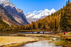 Scena della valle di Changping della montagna di Siguniang Immagini Stock Libere da Diritti