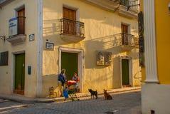 Scena della via con le costruzioni variopinte tradizionali a Avana del centro cuba immagini stock libere da diritti