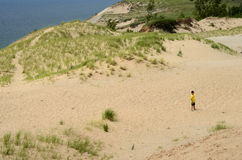 Scena delle dune dell'orso di sonno Fotografie Stock Libere da Diritti