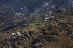 Scena di agricoltura in Himalaya Immagine Stock Libera da Diritti