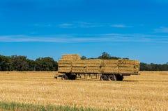 Scena di agricoltura Il rimorchio degli agricoltori ha caricato con le balle di fieno sul campo immagini stock