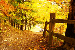 Scena di autunno immagine stock libera da diritti