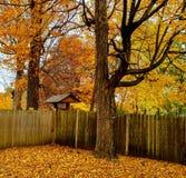 Scena di autunno Immagini Stock