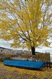 Scena di autunno a Kastoria, Grecia immagine stock