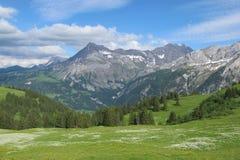 Scena di estate nel Bernese Oberland Fotografia Stock Libera da Diritti