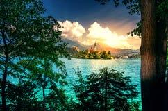 Scena di estate nel parco del lago Bled con il laureato medievale di Blejski del castello Immagini Stock