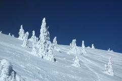 Scena di inverno Immagini Stock