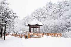 Scena di inverno al mt. emei fotografie stock libere da diritti