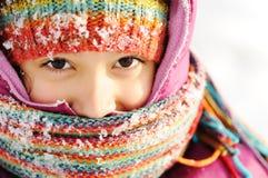 Scena di inverno, bellezza naturale Fotografia Stock