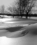 Scena di inverno in in bianco e nero Immagini Stock Libere da Diritti