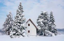 Scena di inverno, casa rurale e pini della neve immagini stock libere da diritti
