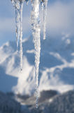 Scena di inverno con ghiaccio e neve Immagini Stock Libere da Diritti