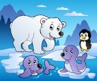 Scena di inverno con i vari animali 1 Fotografia Stock Libera da Diritti