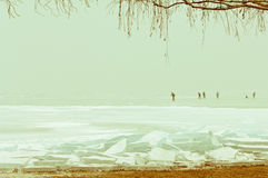 Scena di inverno con il galleggiante congelato dei ghiacci del pack ed altre formazioni Fotografia Stock