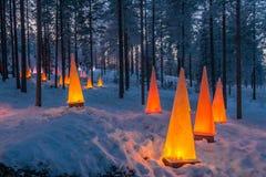 Scena di inverno con le torce elettriche Fotografia Stock