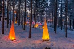 Scena di inverno con le torce elettriche Fotografie Stock