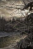 Scena di inverno del fiume Immagini Stock Libere da Diritti