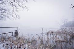Scena di inverno di Snowy con lo stagno e la passerella di legno Fotografia Stock Libera da Diritti