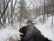 Scena di inverno durante il ciclone della bomba Fotografia Stock