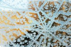 Scena di inverno, finestra congelata Immagini Stock