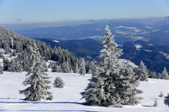 Scena di inverno in montagne Fotografie Stock
