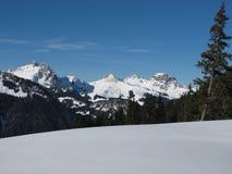 Scena di inverno nel Bernese Oberland Fotografie Stock