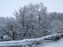 Scena di inverno sul canale Fotografie Stock