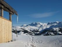 Scena di inverno vicino a Gstaad Fotografia Stock