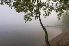 Scena di mattina in autunno Fotografia Stock