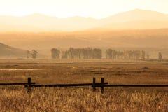Scena di mattina in Yellowstone Immagini Stock Libere da Diritti