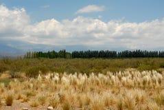 Scena di Mendoza Fotografie Stock