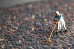 Scena di modello dell'agricoltore Immagini Stock