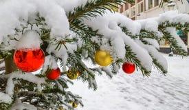 Scena di Natale: albero di Natale decorato nell'ambito dell'esterno della neve fotografia stock libera da diritti