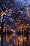 Scena di notte della promenade di Cheltenham Fotografie Stock Libere da Diritti