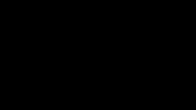 Scena di notte di atterraggio di aeroplano video d archivio