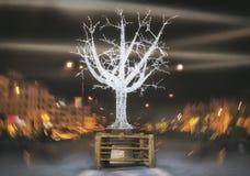 Scena di notte di San Pedro Boulevard Marbella Andalusia Spain Immagini Stock Libere da Diritti