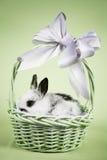 Scena di Pasqua Fotografia Stock
