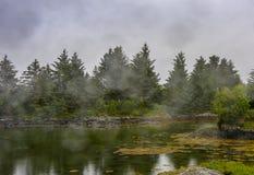 Scena di Serene Scandinavian Fjord Village Fotografia Stock