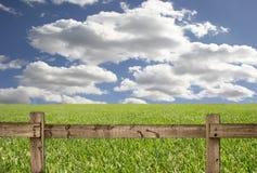 Scena esterna con la rete fissa, il cielo e l'erba di legno Fotografie Stock