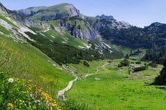 Scena idilliaca che fa un'escursione nelle montagne nelle alpi austriache di un giorno soleggiato, Rofan, Karwendel della montagn Fotografie Stock Libere da Diritti