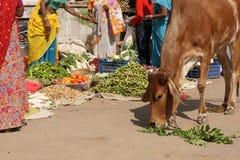 Scena indiana della via Fotografia Stock